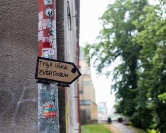 18_ES_2106_1700_Dobrodrustv Tygra Liky a Psa_low-3261